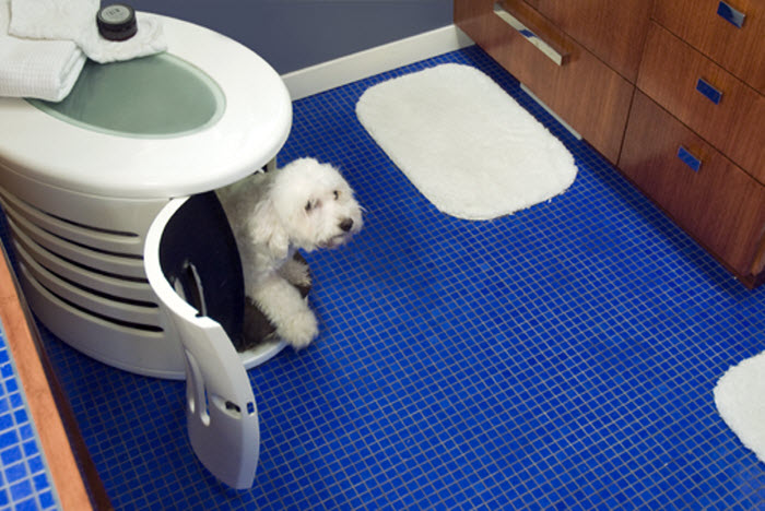 Dog shelter in the bathroom