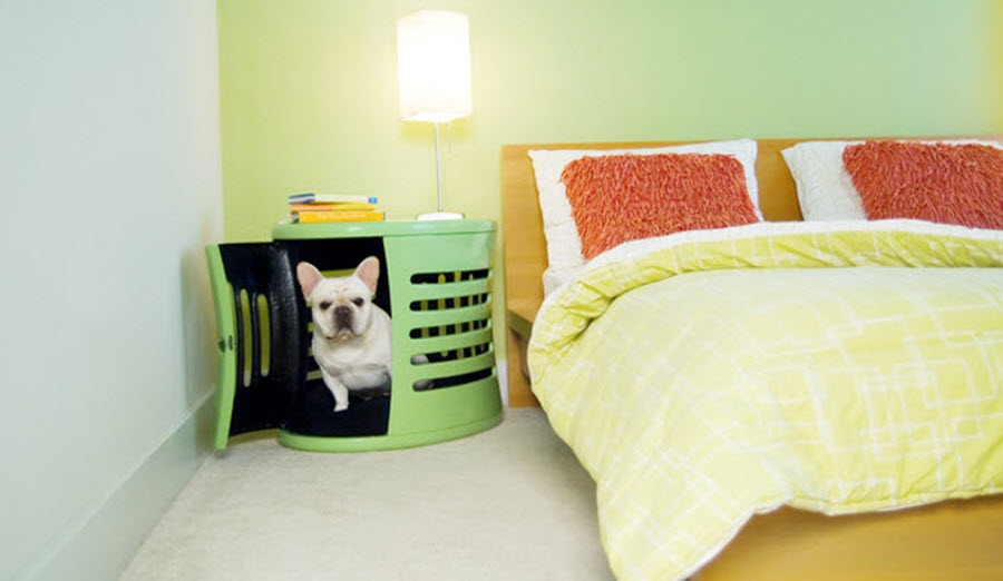 Modern Green kennel idea for Dogs