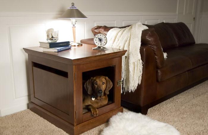 Modern Pet shelter Idea