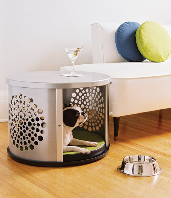 Modern and portable dog space at home