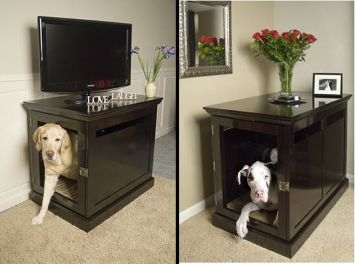 Spaces for pet at home