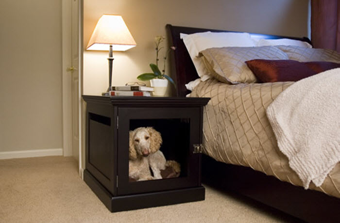 Woodern design of pet space