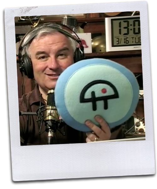 twit polaroid pillow