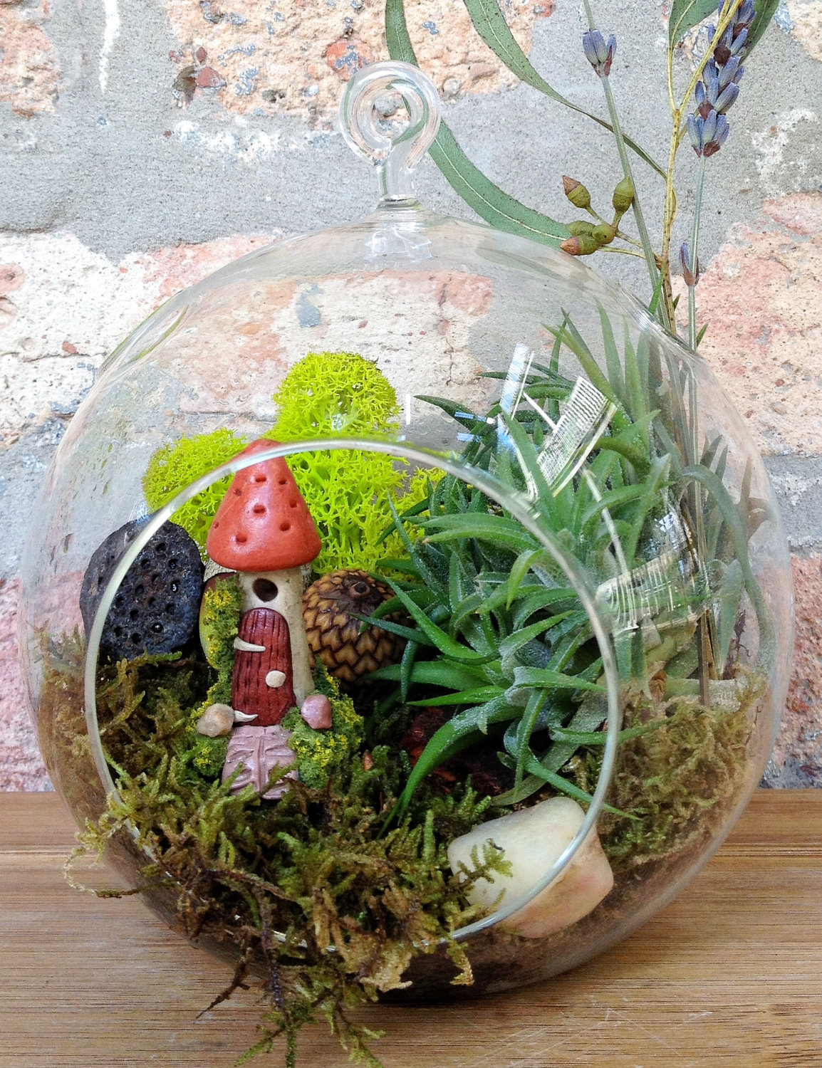 Beautiful Plant Terrarium