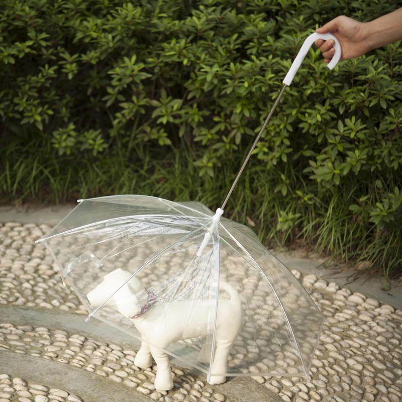 Pet Umbrella