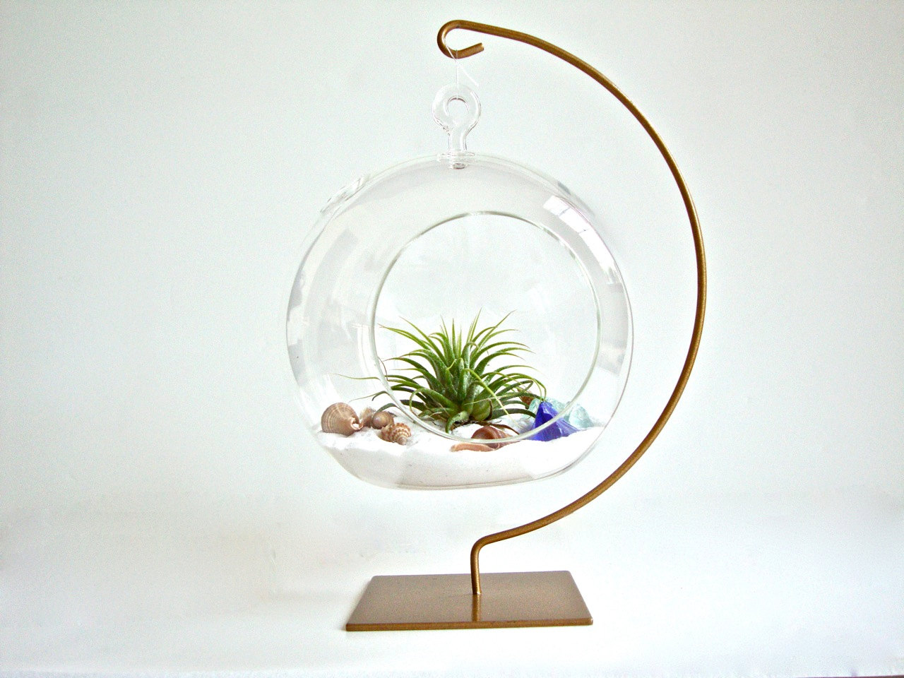 Plant Terrarium with Display Stand