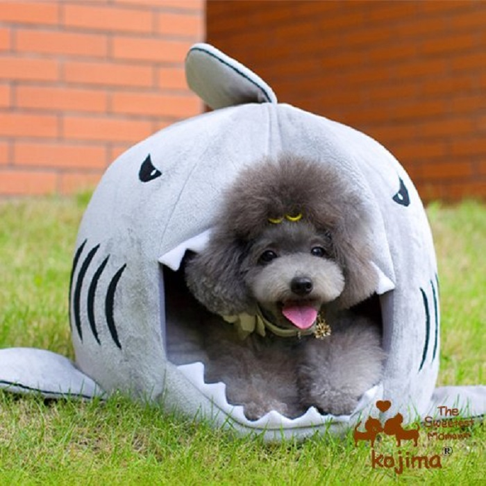 Shark Shaped Dog Bed