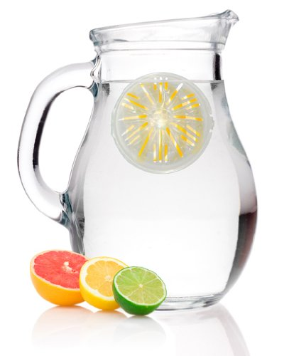 Healthy Steps Water Infuser