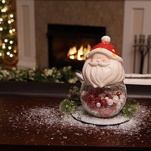 Adorable Santa Cookie Storage Jars
