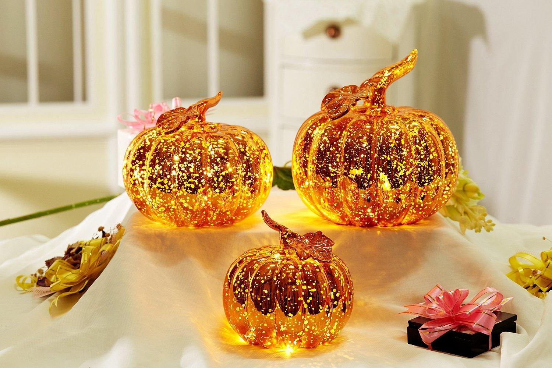 Thanksgiving  Pumpkin Jack O' Lantern
