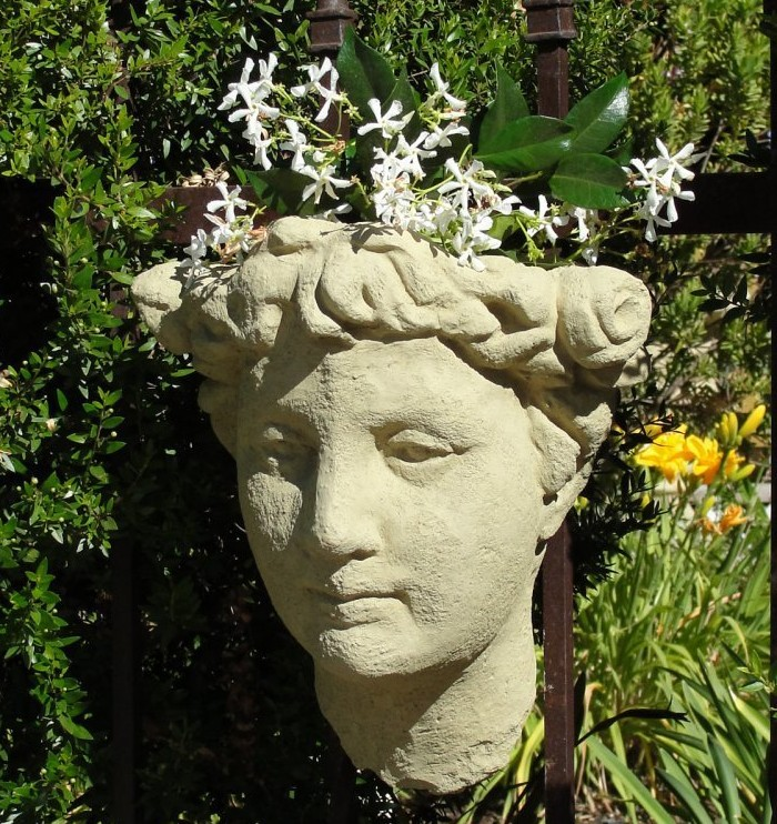 Lady's Head Wall Planter