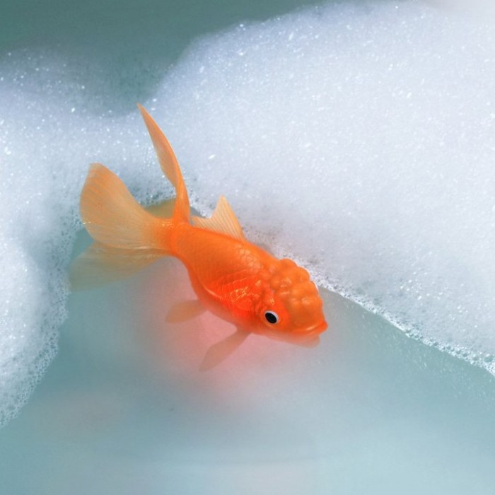 Toy Light-Up Bath Goldfish