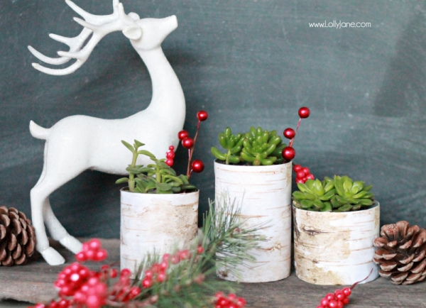 Birch Wood Tin Can Planters