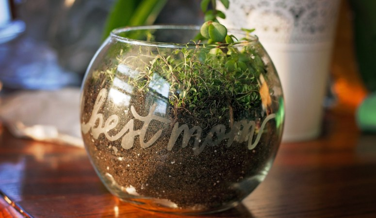 Glass Etched Terrarium for Mom
