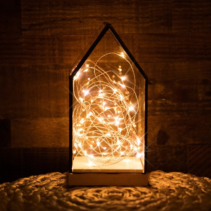 Party String Light Lamp