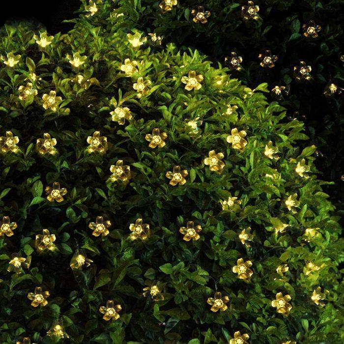 Blossom Flower Fairy Lights