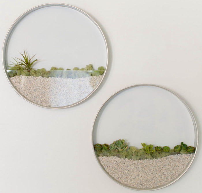 Circular Framed Planters Wall Art