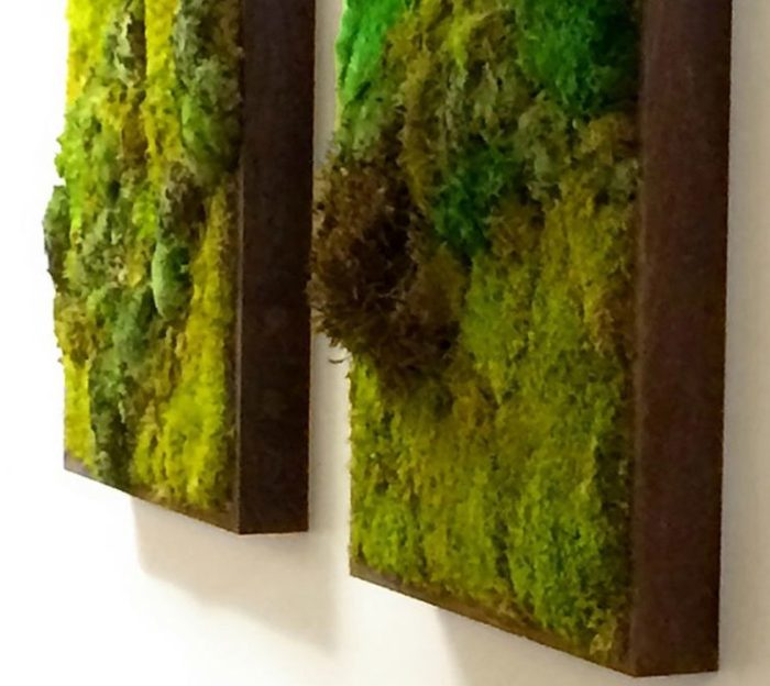 Moss Wall Gallery