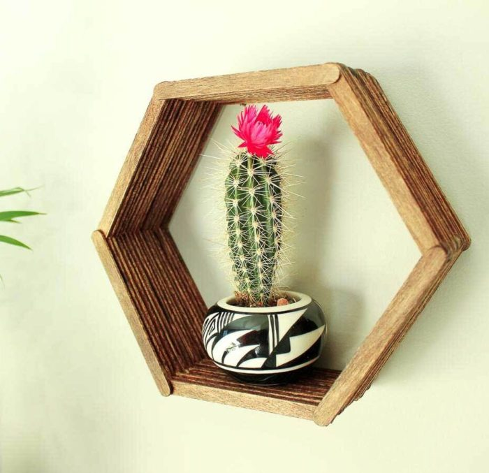 Popsicle Sticks Shelf Wall Art