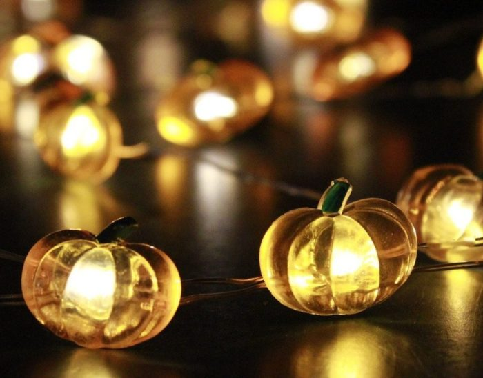 Harvest Pumpkin String Lights