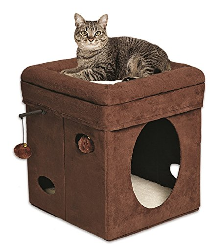 Curious Cat Cube Bed