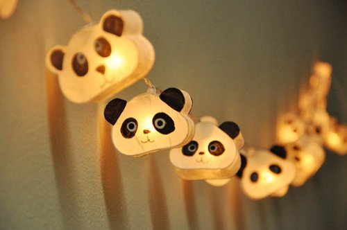 Cutie Panda Lanterns