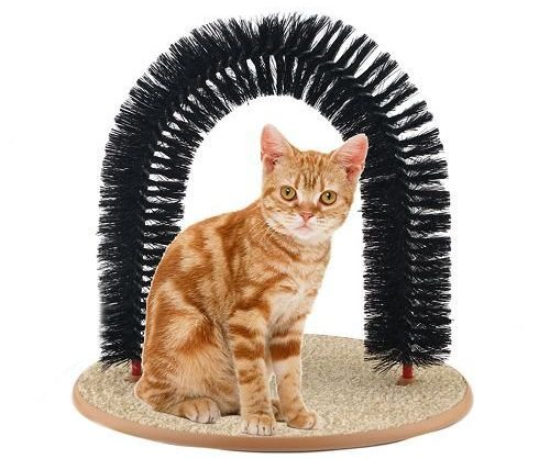 Self-Groomer and Massager Cat Bed