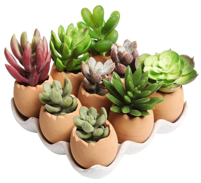 Decorative Egg Shaped Planters