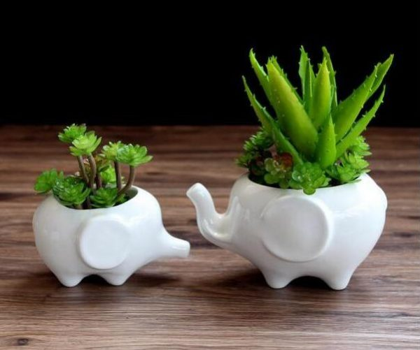 Mini White Elephant Planters