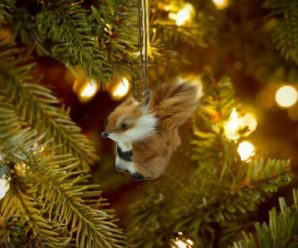27 Must Have Christmas Tree Ornaments this Year