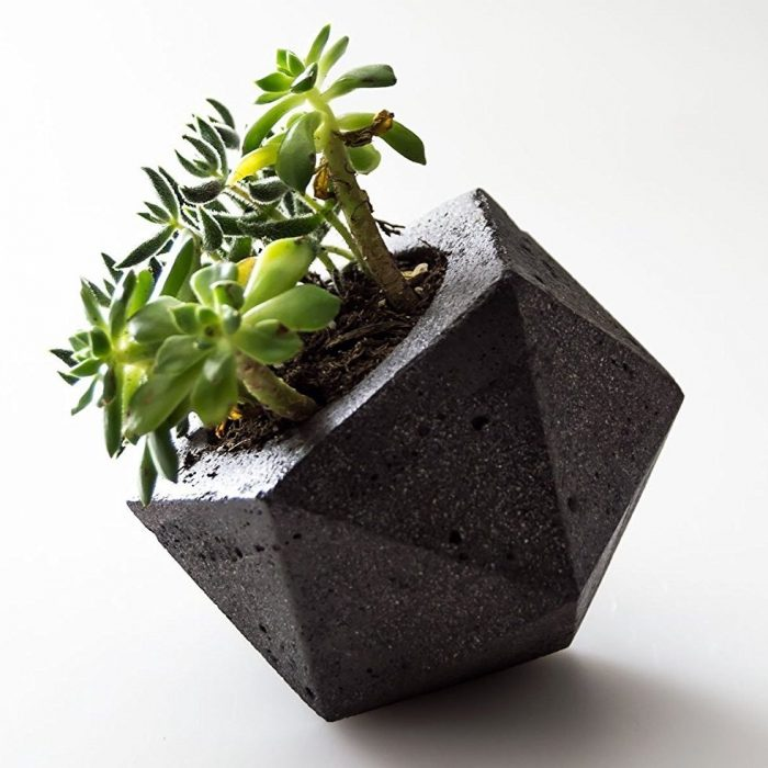 Unique Geometric Concrete Planter