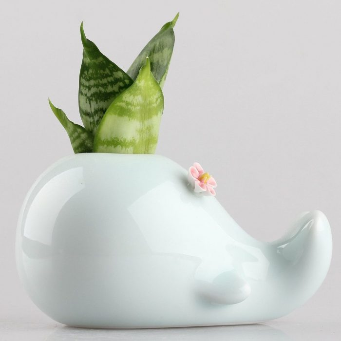 Whale With Red Flower Design Planter