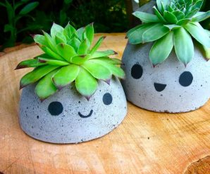 DIY Cute Concrete Succulent Planter