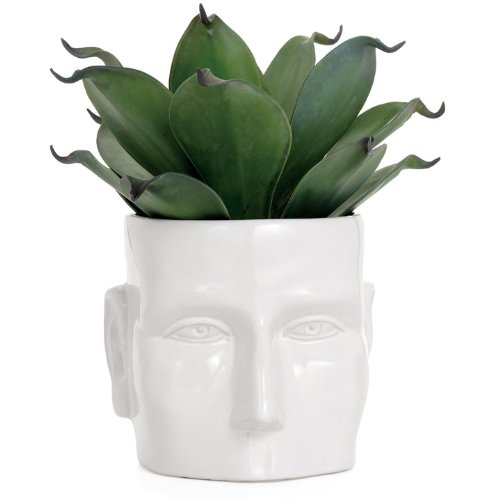 Whimsical Face Pattern Planter
