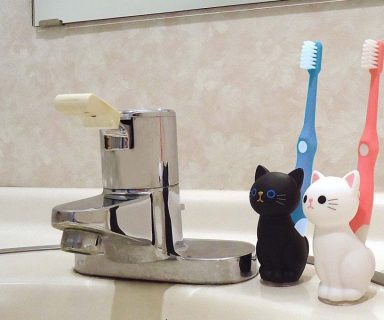 cat toothbrush holder