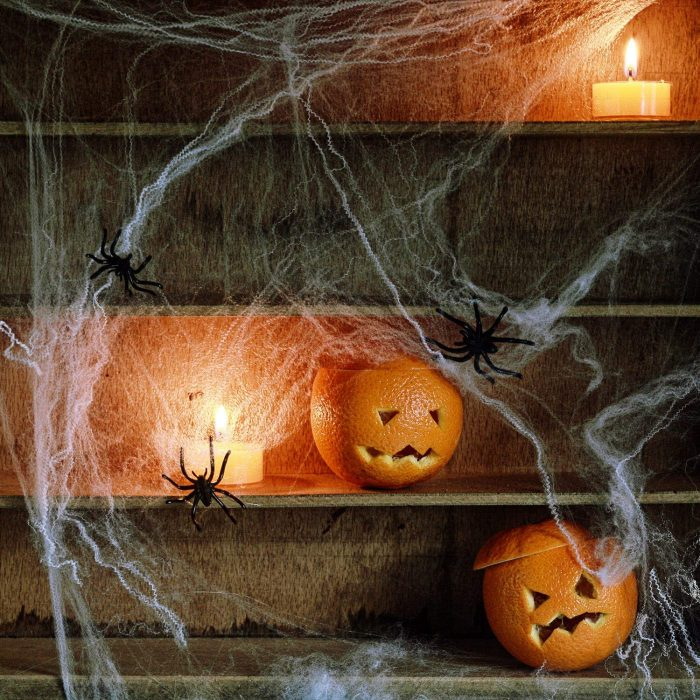 Terrifying Spider Cob Web Halloween Door Decor
